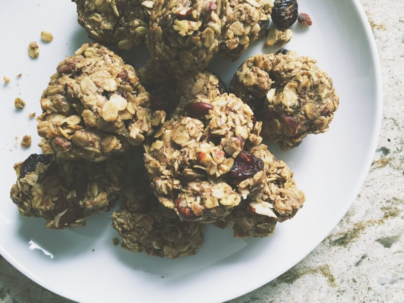 Cranberry Oat Protein Cookies